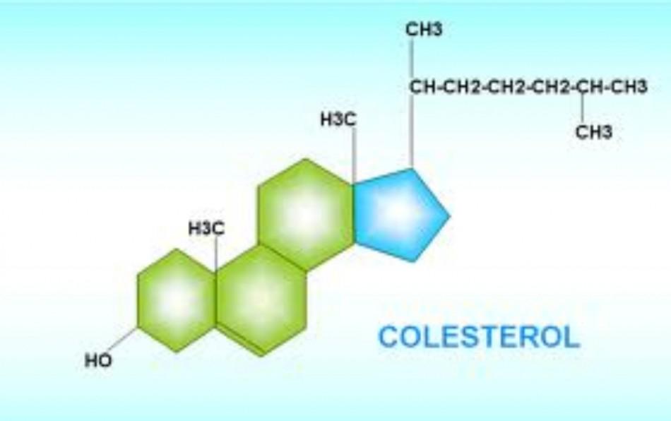 снизить уровень плохого холестерина крови